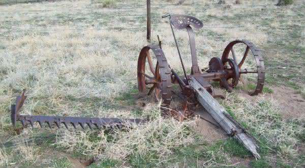 cortador de grama produtos que mudaram drasticamente ao longo do tempo
