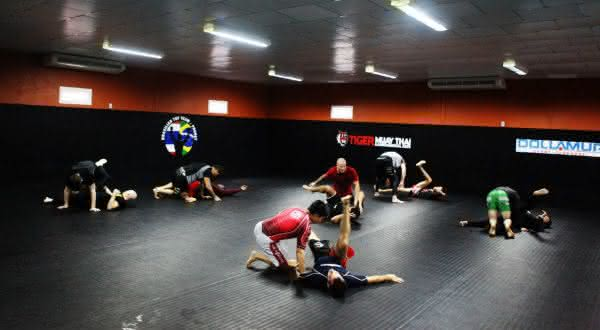 tiger muay thai entre as academias mais caras do mundo
