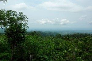 9.- Parque Nacional 'El Imposible' turísticos que debes visitar en El Salvador