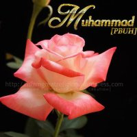 Rose dedicated to Muhammad [pbuh