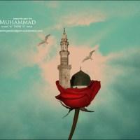 Masjid Nabawi(Medina) in Rose!