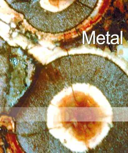 The Metal Type. Five Element Acupuncture for metal elements