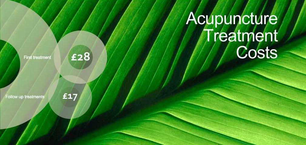 Affordable acupuncture prices, Torquay, Paignton and Brixham.