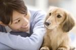 犬や猫の臭い匂いを消す対策法について!おすすめの消臭法