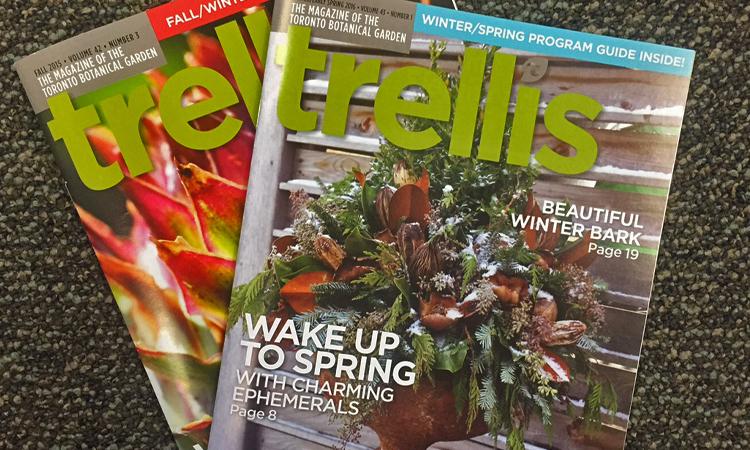 trellis magazines 2015