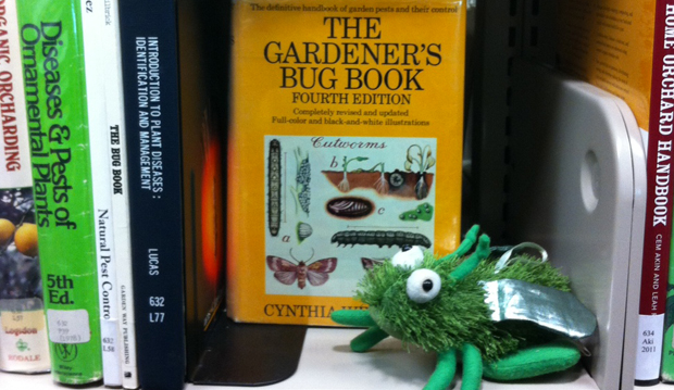 library bugs