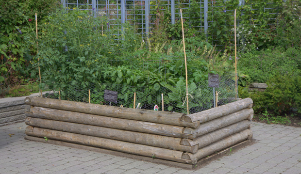 raised bed with logs