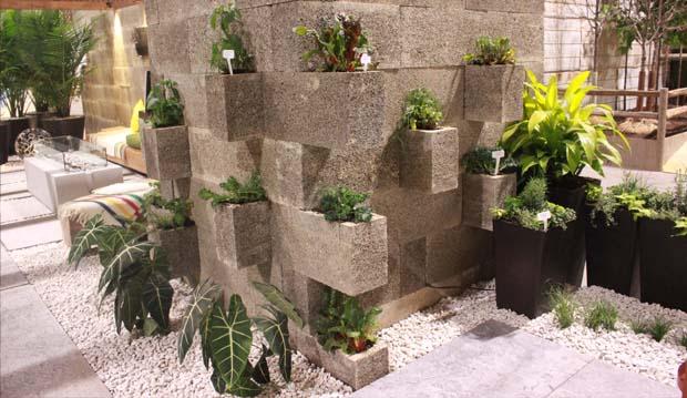 rewild stone wall