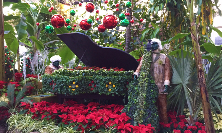 allan gardens - piano with red pops of colour - web