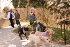 Linda Quigley brings her dogs along for the ride.