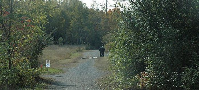 A pair of hikers set off into the wilderness of Rouge Park.
