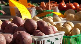 There's plenty of variety in the vegetables and fruit available at the UTSC farmers' market.