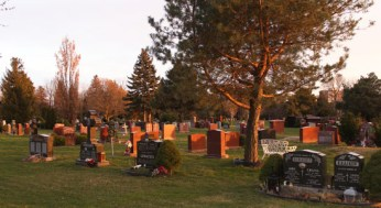 Graves at Pine Hills Cemetery.
