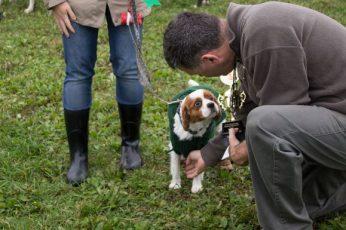 Scarborough's cutest medium dog receives his award.