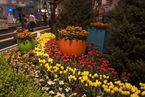 Colourful displays of flowers mark the entrance to the show.