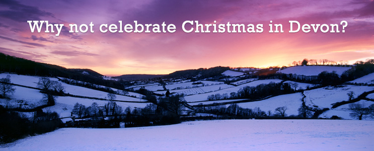 celebrating christmas in Devon