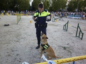 Kora, de la Unidad Canina de la Policía de Torrelodones