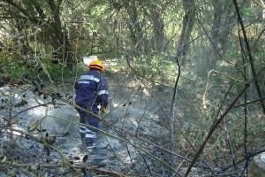 Protección Civil de Torrelodones prestó ayuda en un incendio en La Navata