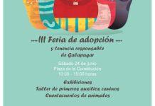 Feria de adopción