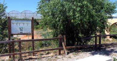 Denuncian el estado de abandono en el entorno dels Arquets de Baix