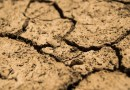 La falta de lluvias agrava la sequía y los embalses bajo mínimos
