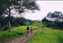 Mengenal Potensi Wisata Dan Ubud Akomodasi