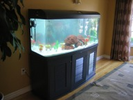 60 Gallon / 240 liters capacity