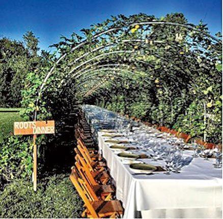 The Chef's Garden