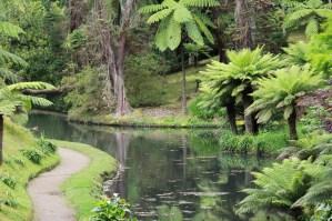 Botanischer Garten Sao Miguel