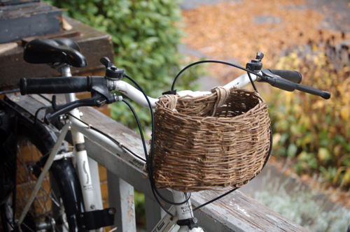 english ivy basket pruteny kos na bicykel