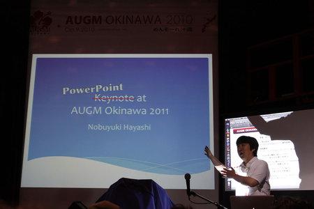 augm_okinawa_2010_1.jpg