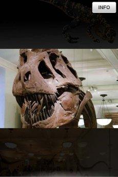 app_edu_dinosaurs_5.jpg