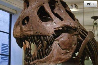 app_edu_dinosaurs_9.jpg