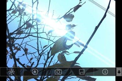 app_photo_lensflare_4.jpg