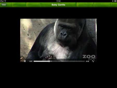 app_edu_pocket_zoo_hd_6.jpg