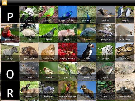 app_edu_mini_adventures_animals_8.jpg