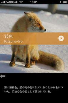 app_ref_japanese_colorful_data_3.jpg