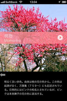 app_ref_japanese_colorful_data_7.jpg