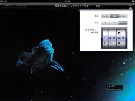 app_photo_aquamarine_fukushima_4.jpg