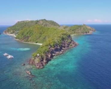 Drone Apo Island Negros Oriental