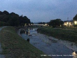 有野川散歩画像@東洋マーク