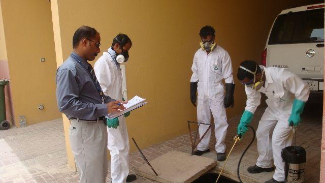 شركة مكافحة حشرات ورش مبيدات بجدة