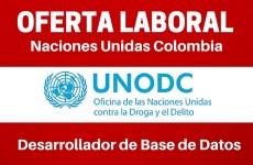 Naciones Unidas – UNODC – abre convocatoria laboral