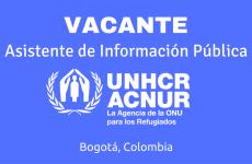 Asistente de Información Pública con ACNUR