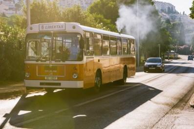Travel-79