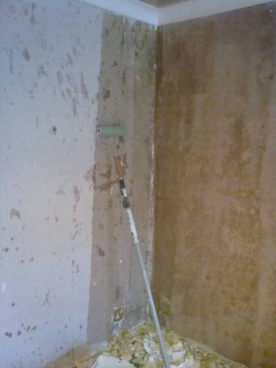 How to skim plaster walls smooth? Toupret TX130