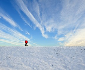 http://www.dreamstime.com/-image12265428