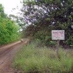 Munro trail in hawaii