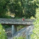 bike rider on trail bridge