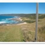 hiking near the ocean in australia